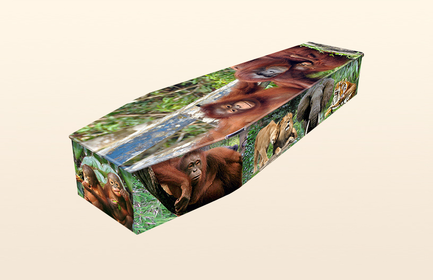 Jungle Love Pattern Colourful Coffins by Carl Hogg Funerals Golborne